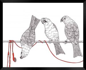 Birds On The Wire illustration by Clark Giesbrecht
